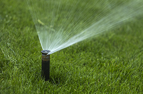 Avoiding Waste When Watering Your Lawn
